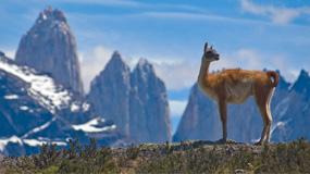L'Argentine-et-ses-voyages-authentiques